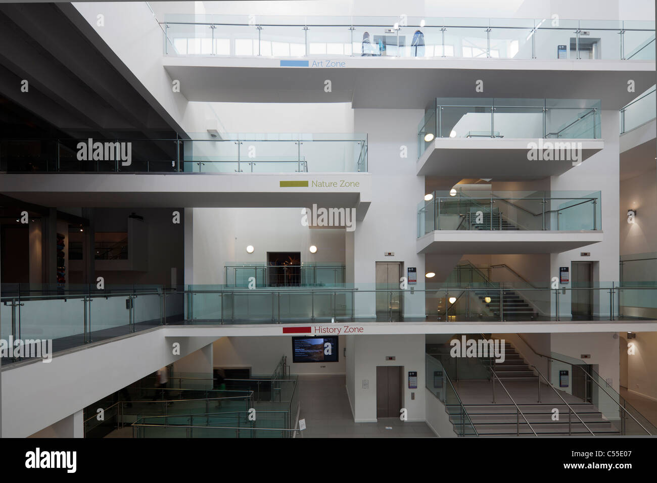 redesigned lobby of the Ulster Museum, Belfast, Northern Ireland, UK - Stock Image