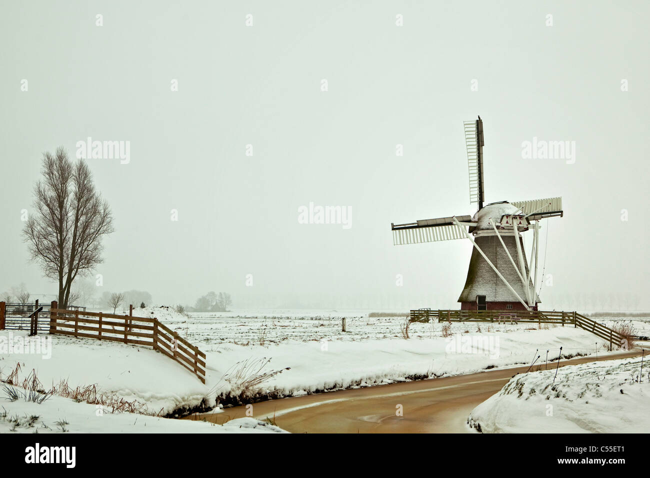 The Netherlands, Garrelsweer, Windmill in snow - Stock Image