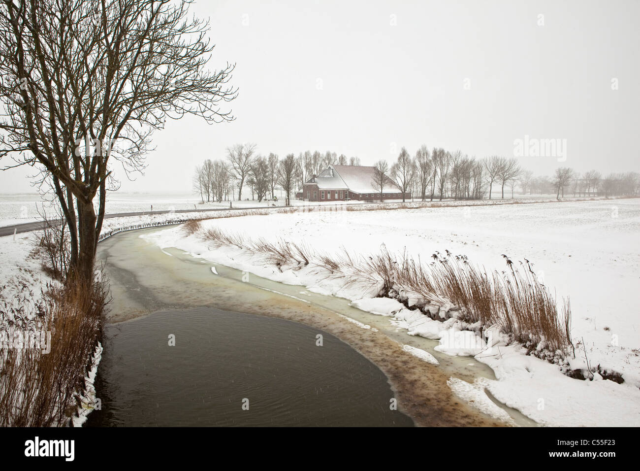 The Netherlands, Usquert, farm and canal in snow. - Stock Image
