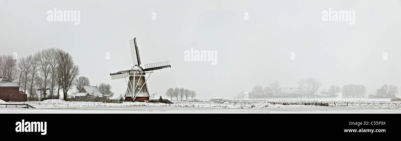 The Netherlands, Garrelsweer, panoramic view of windmill in snow with farm in background - Stock Image