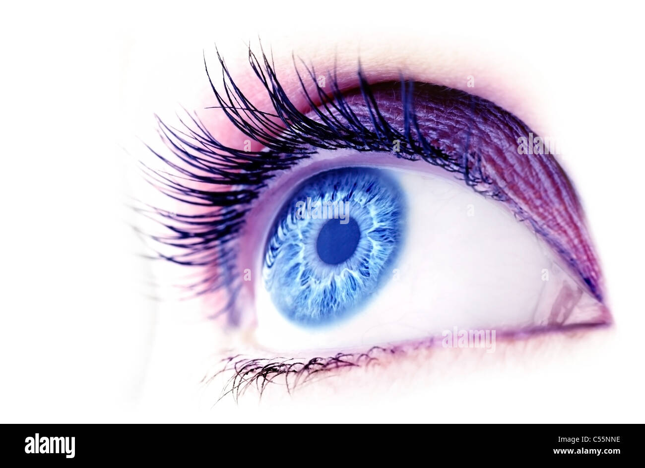 Beautiful Abstract Blue Eye Extreme Closeup With