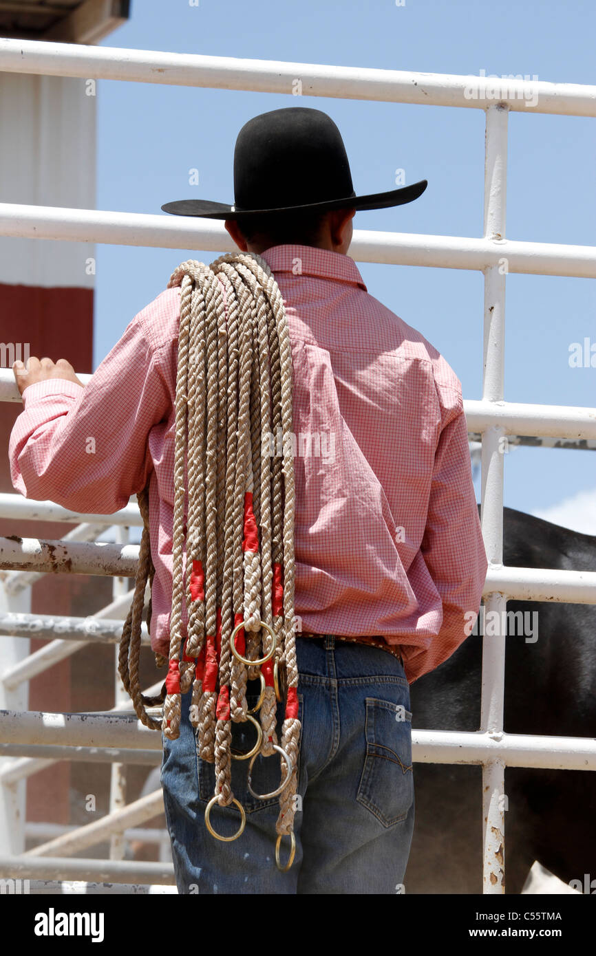 Man checking the bulls to be used in a competition at the Annual Indian Rodeo held in Mescalero, New Mexico. The - Stock Image