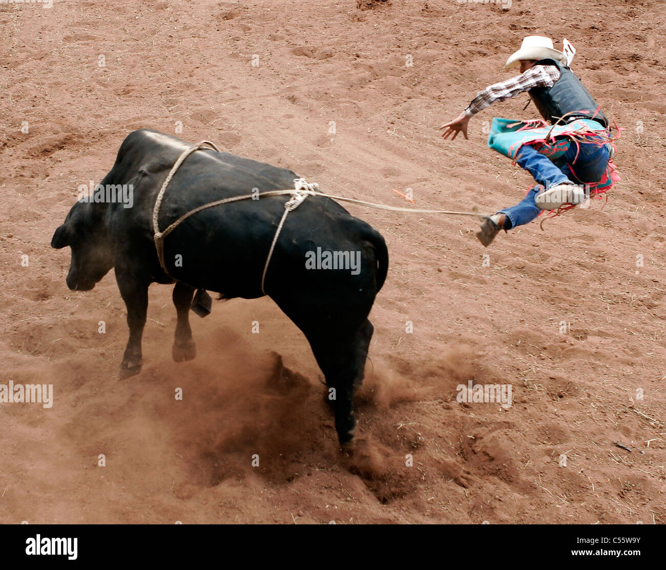 Competitor in the bull riding event at the Annual Indian Rodeo held in Mescalero, New Mexico. - Stock Image