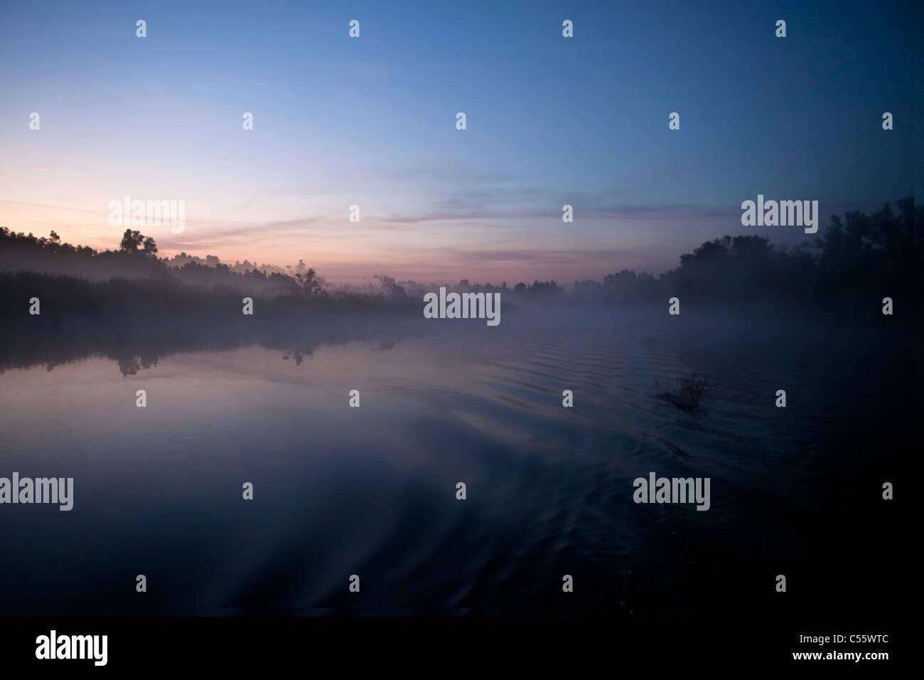The Netherlands, Werkendam, De Biesbosch national park. Landscape at sunrise. - Stock Image