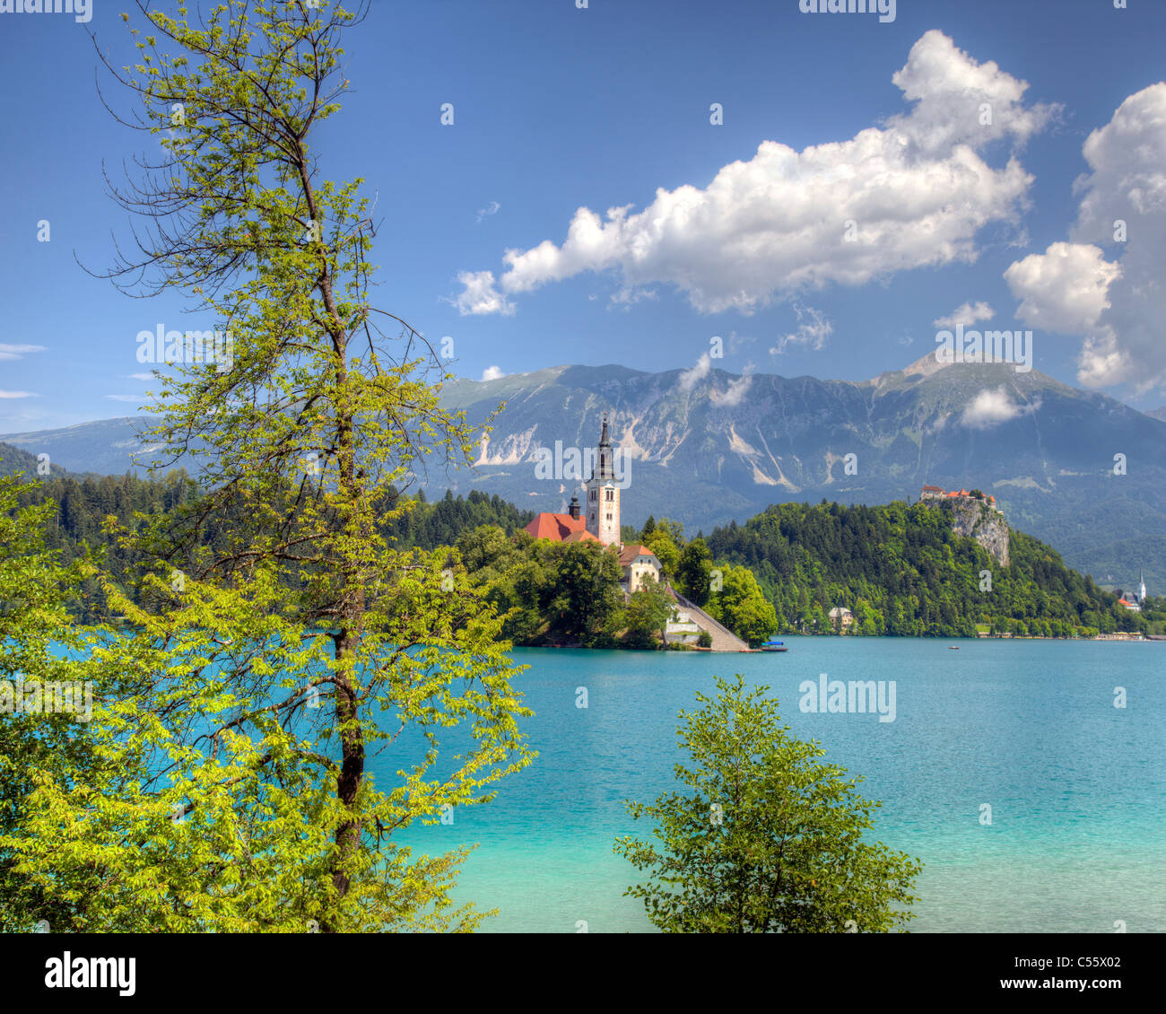 SLO - GORENJSKA REGION: Lake Bled and Island Church of the Assumption - Stock Image