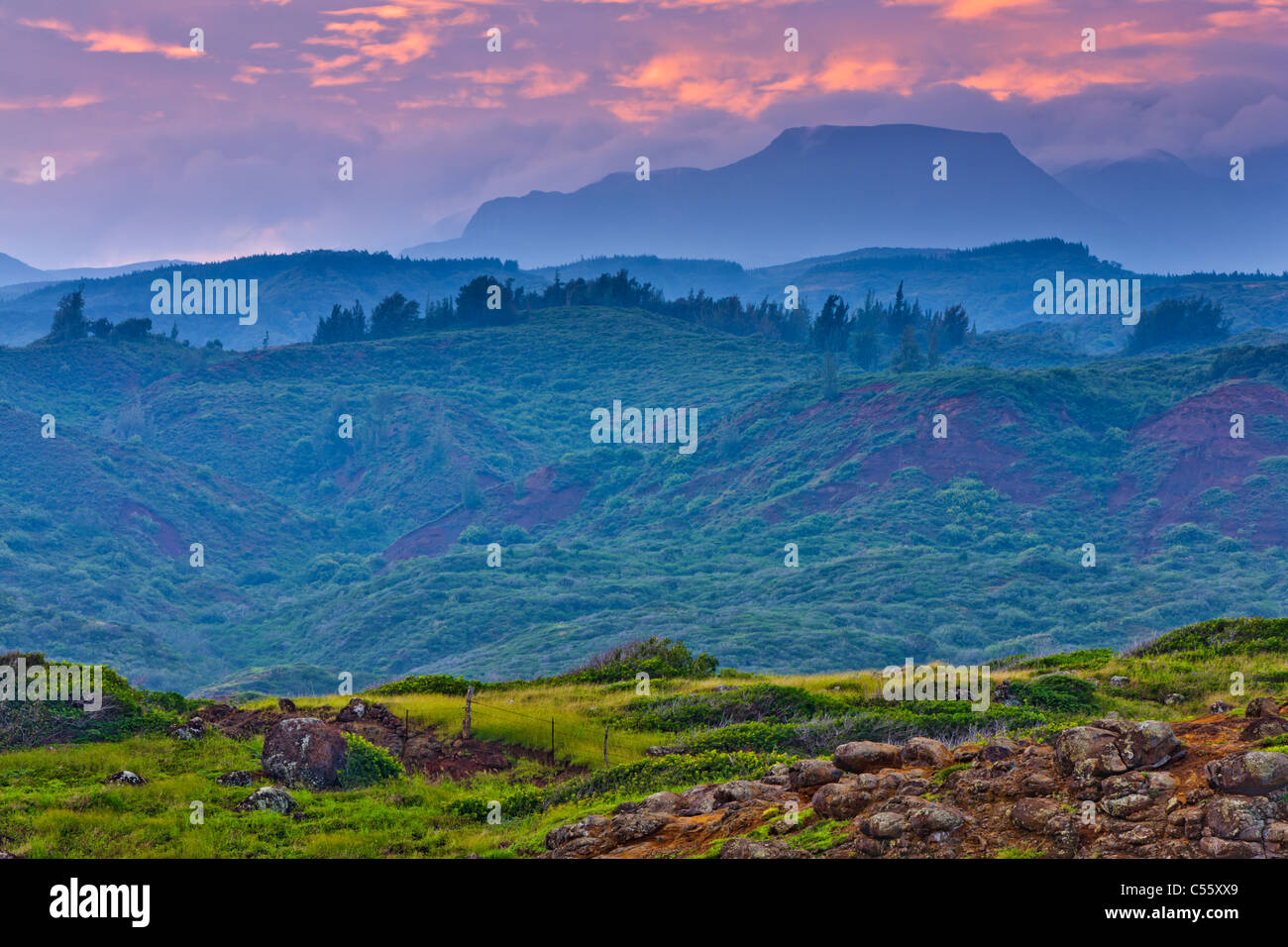 Pasture with mountains in the background, Haleakala, Hawea Point, Maui, Hawaii, USA - Stock Image
