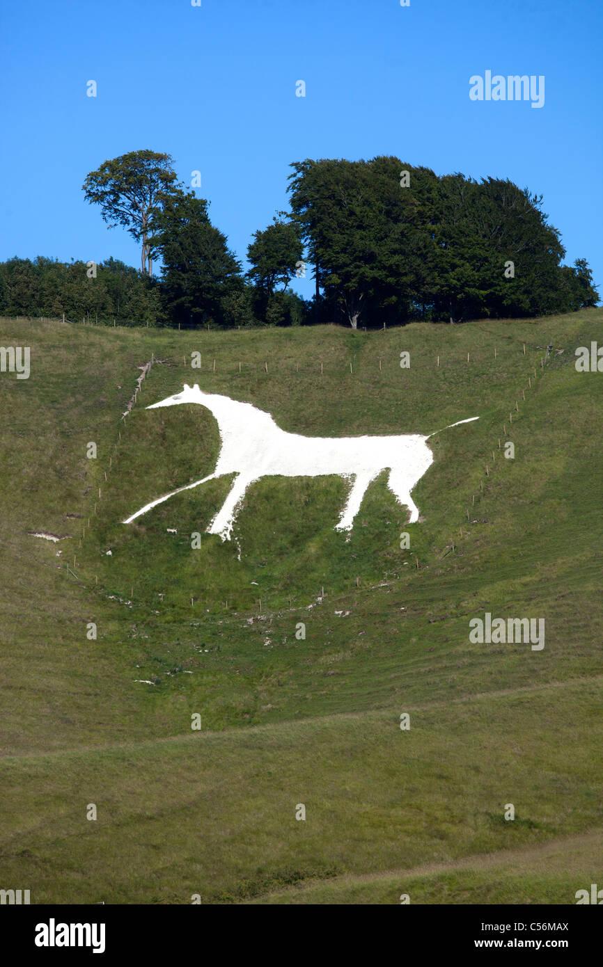 Cherhill White Horse Wiltshire England UK Stock Photo