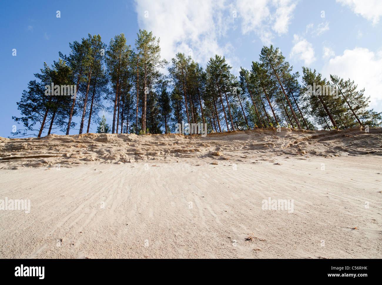 Esker soil eroding , Finland - Stock Image