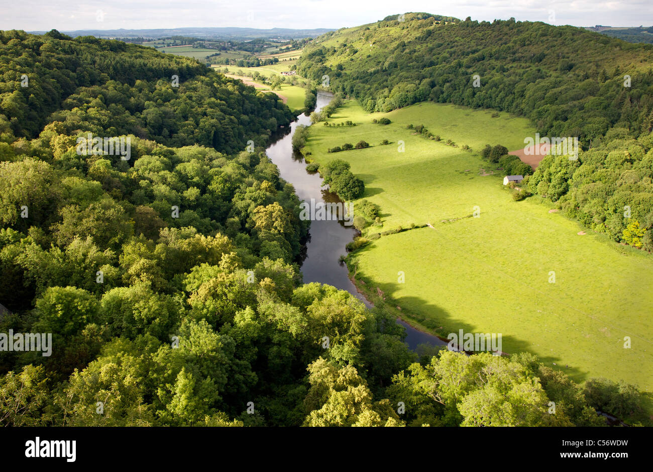 The view north from Symonds Yat Rock and the Wye valley towards Ross on Wye - Stock Image
