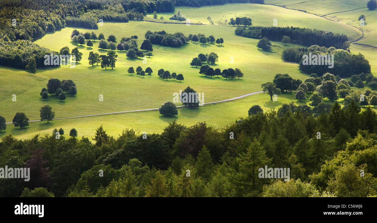Meticulously contrived park landscape at the Chatsworth estate in Derbyshire originally designed by Capability Brown - Stock Image