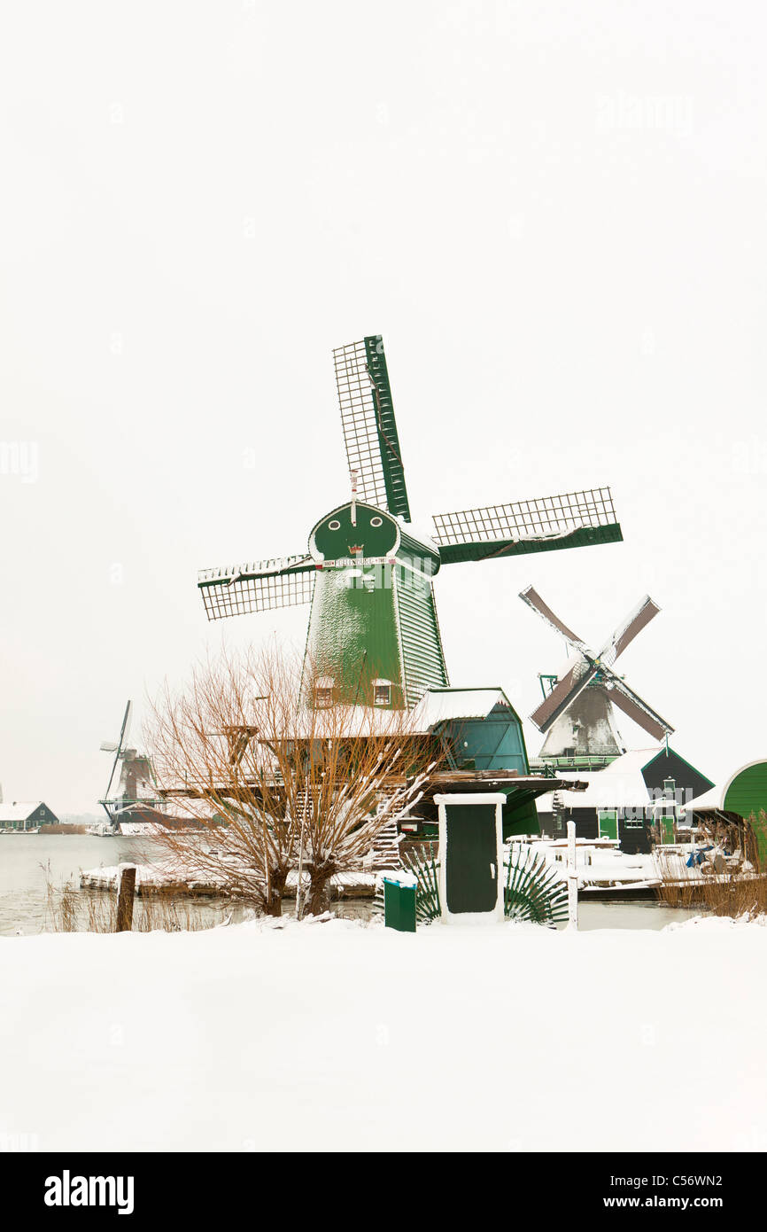 Zaanse Schans, village on the banks of the river Zaan with characteristic green wooden houses, historic windmills. - Stock Image