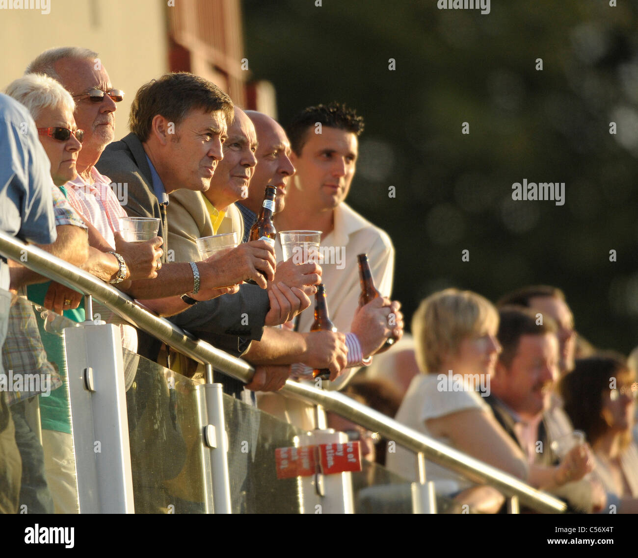 Crowd during their t20 South Divison game at the St Lawrence Ground, Canterbury, Kent, 8th July 2011 - Stock Image