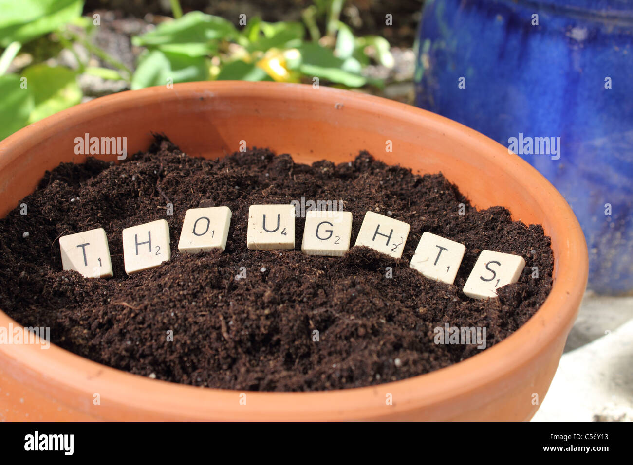 the word THOUGHTS in a pot with earth - planting thoughts - Stock Image