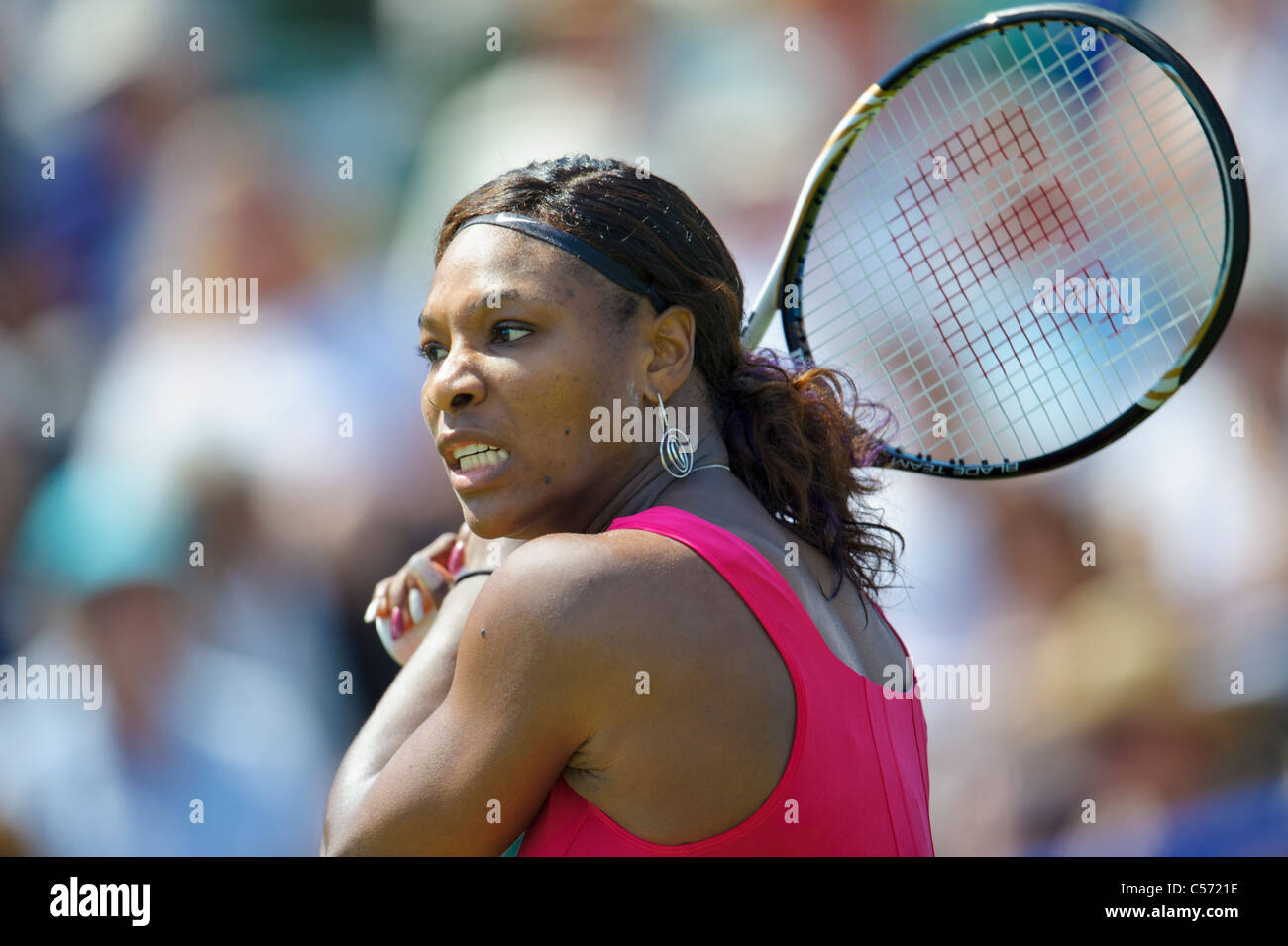 Aegon International tennis tournament, Eastbourne 2011, East Sussex. Serena Williams of USA. - Stock Image