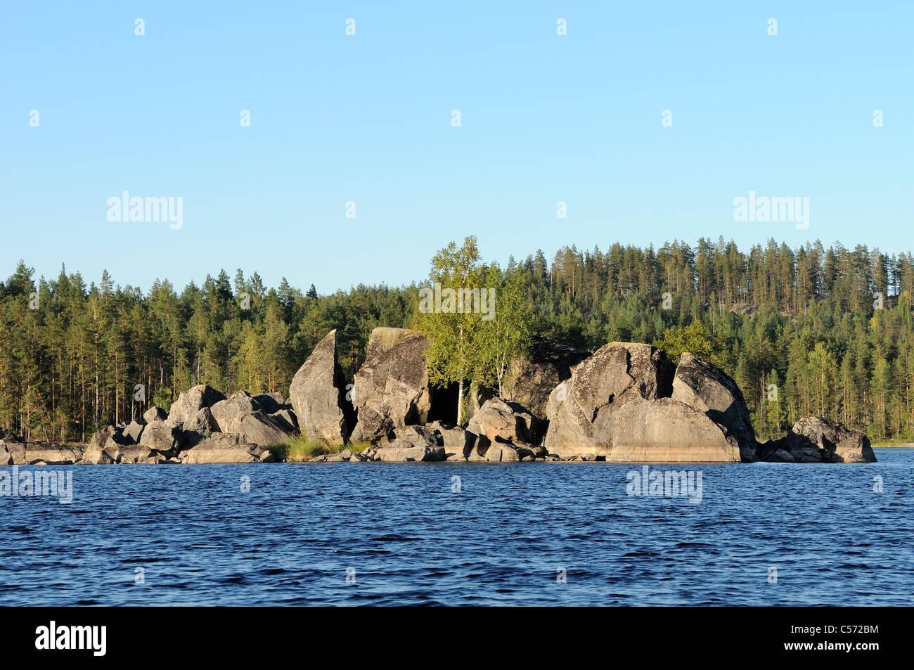 Rocky island on Lake Saimaa, with Silver birch trees (Betula pendula) growing between huge, fissured granite boulders, Stock Photo