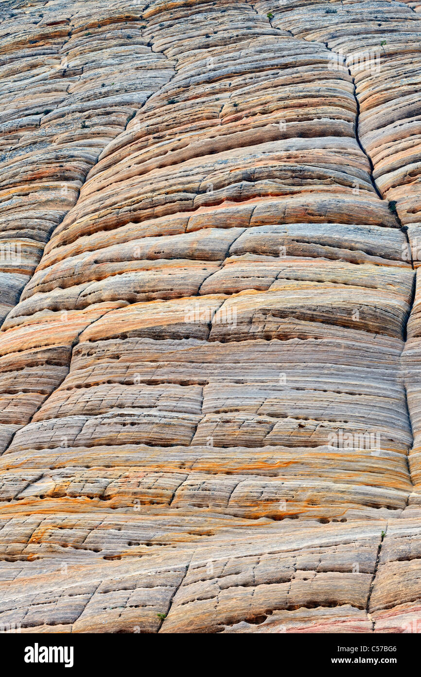 Checkerboard patterns of Navajo sandstone in Utah's Zion National Park. - Stock Image