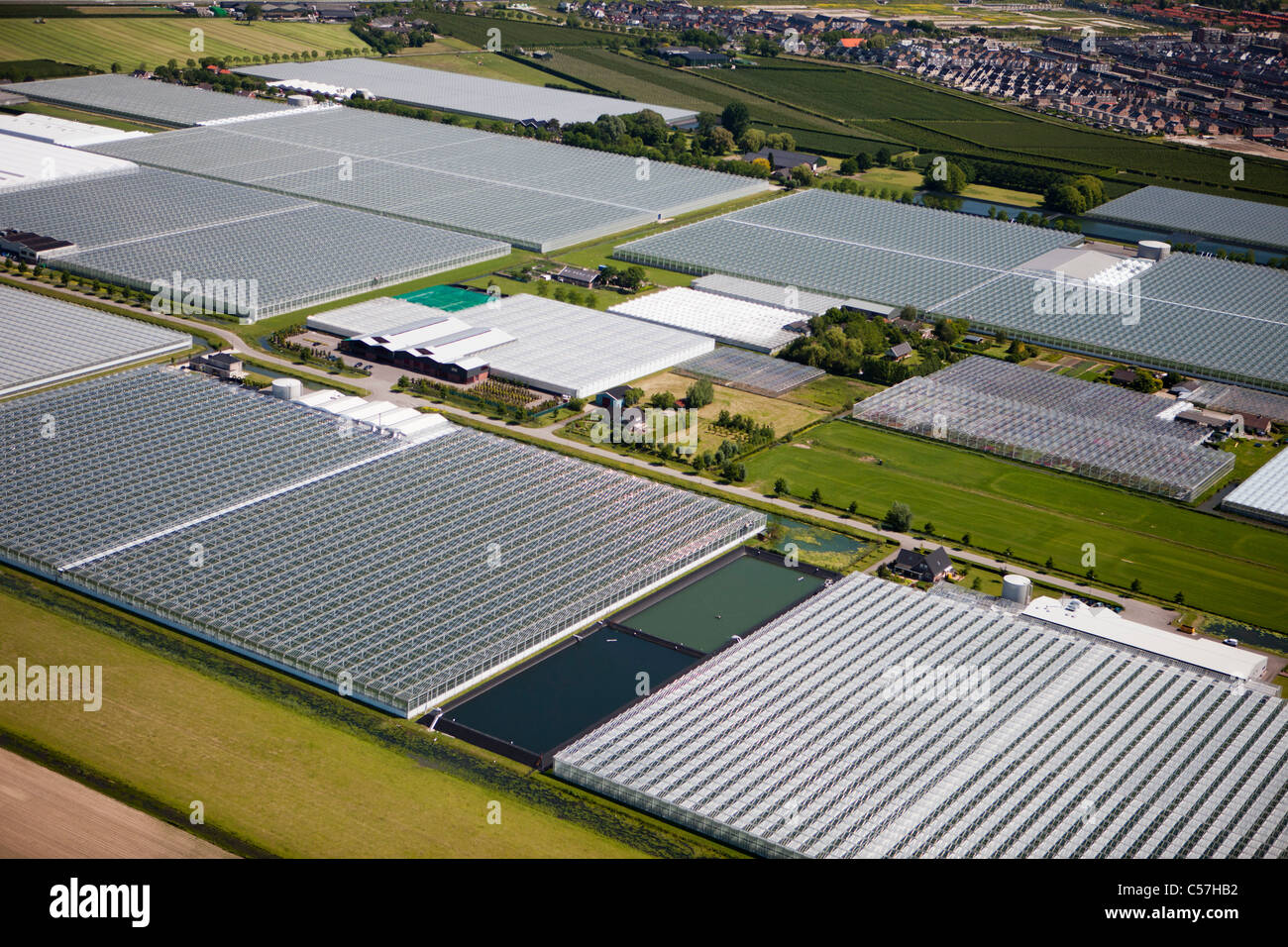The Netherlands, Utrecht, Greenhouses. Aerial. - Stock Image