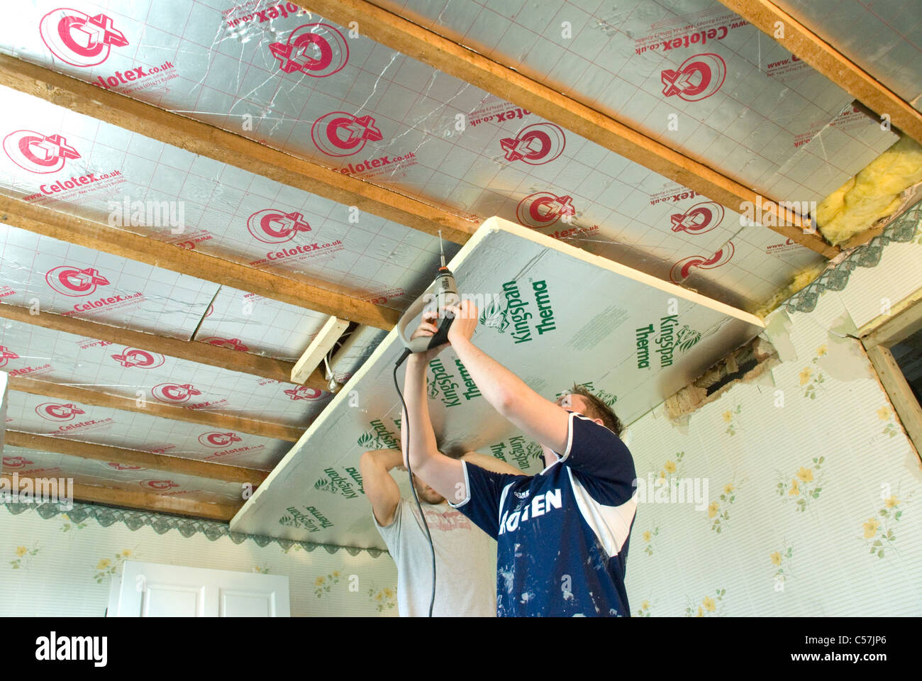 Builders installing high performance Kingspan and Celotex thermal insulation boards to the walls and ceiling of - Stock Image