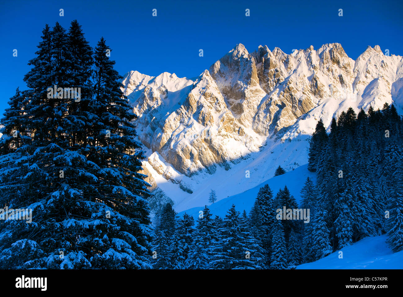Silver records, Switzerland, Europe, canton St. Gallen, Toggenburg, mountains, alp stone, snow, winter, firs - Stock Image