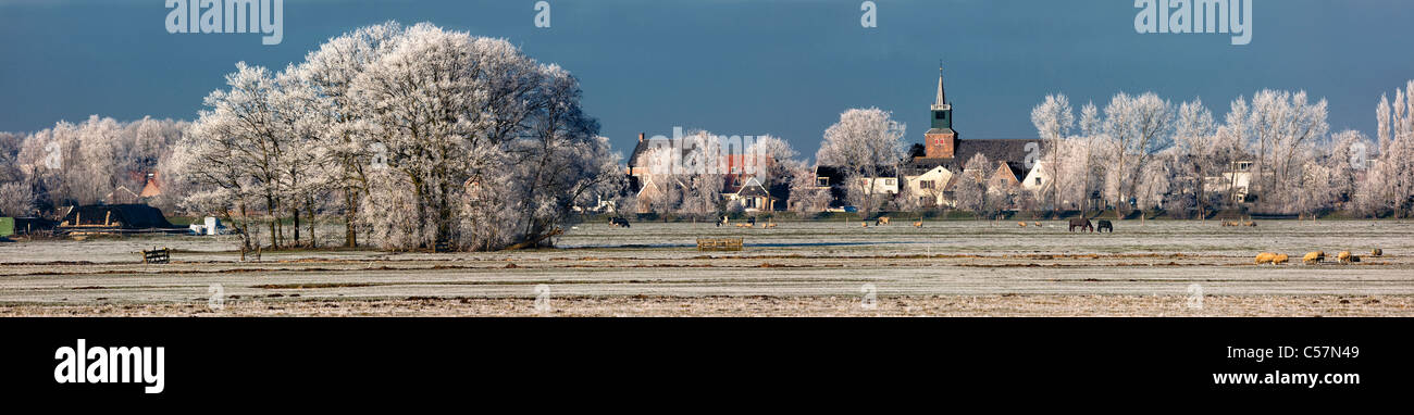 The Netherlands, Nigtevecht, Panoramic in winter. Snow. - Stock Image