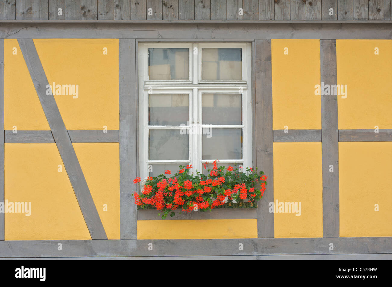 Detail of an old house with fachwerk or half-timbering in the city of Haslach, Schwarzwald, Baden-Wurttemberg, Germany - Stock Image