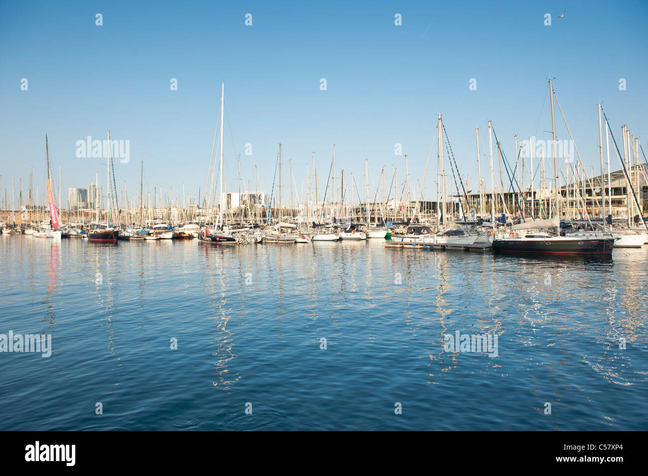 View of the anchored boats at the Barcelona Marina Harbor (Moll de la Fusta), Spain - Stock Image