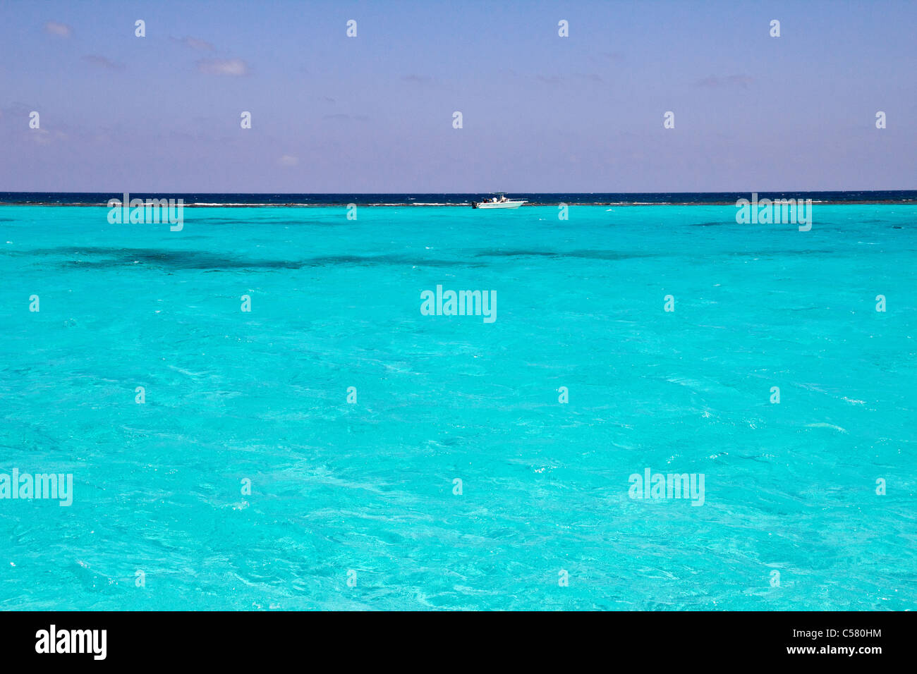Stingray City, Cayman Islands - Stock Image