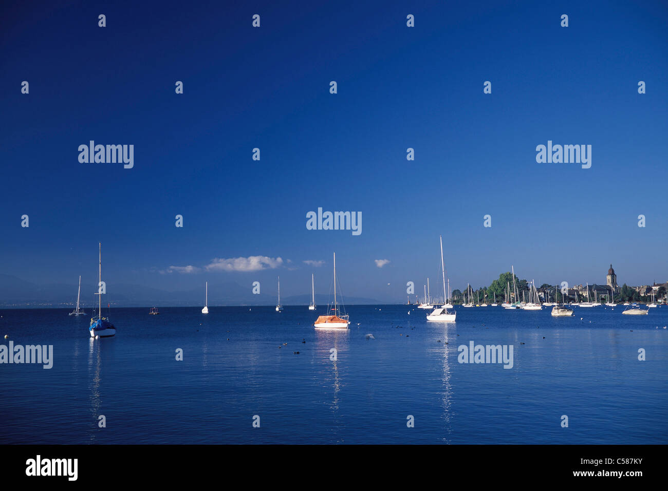 Vaud, harbour, port, scenery, ship, ships, ship, Morges, Switzerland, Europe, lake, Lac Léman, lake Geneva, - Stock Image