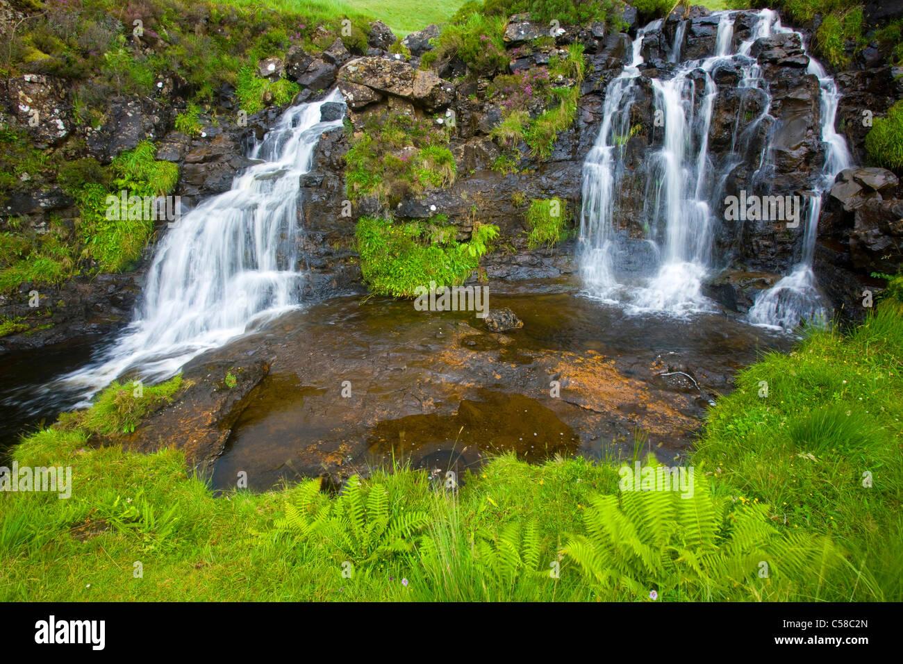 Fairy pools, Great Britain, Scotland, Europe, island, isle, Skye, brook, rock, cliff, waterfalls, fern - Stock Image