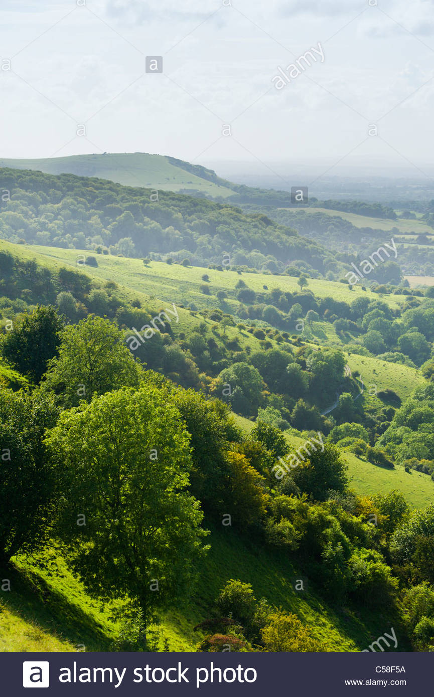 South Downs National Park, from Ditchling Beacon, East Sussex, England. - Stock Image