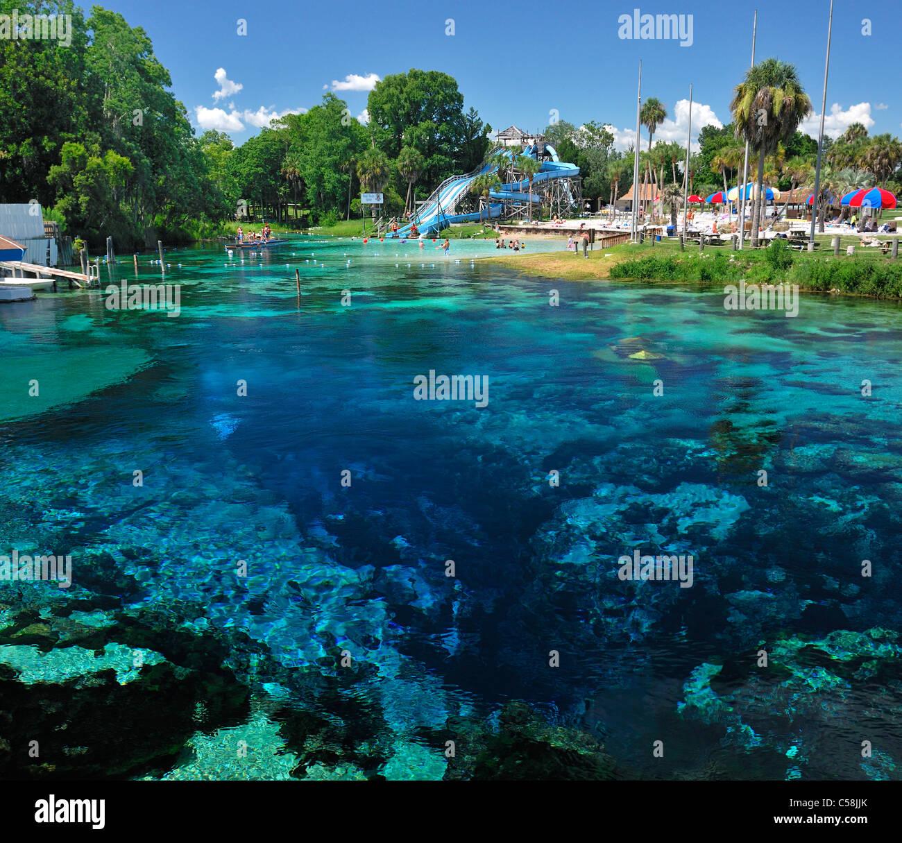 Weeki Wachee, Spring, Water park, Weeki Wachee Springs, State Park, water, Florida, USA, United States, America, - Stock Image