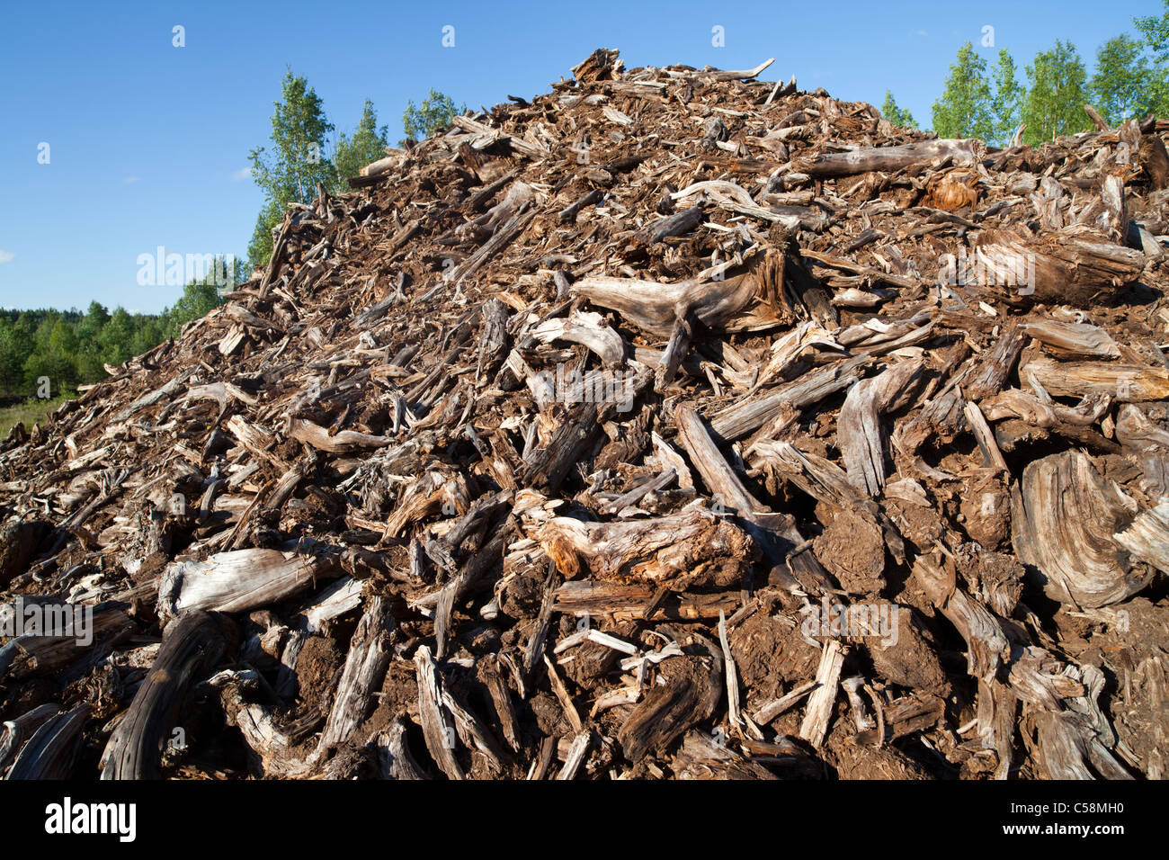 Pile of tree stumps and roots picked from peat extraction area - Stock Image