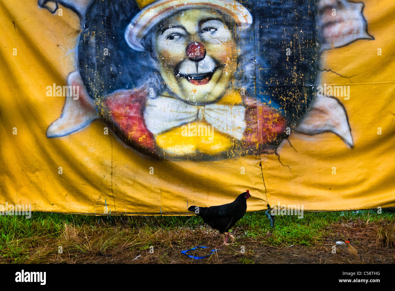 A clown picture painted on a tent of the Circo Anny, a family run circus wandering the Amazon region of Ecuador. - Stock Image