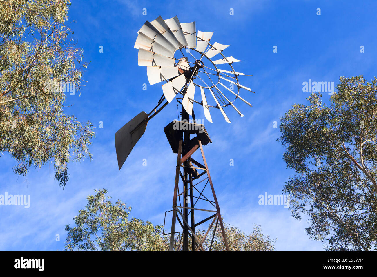 A water pump windmill surrounded by Eucalyptus trees typically found in of Australian farmland - Stock Image