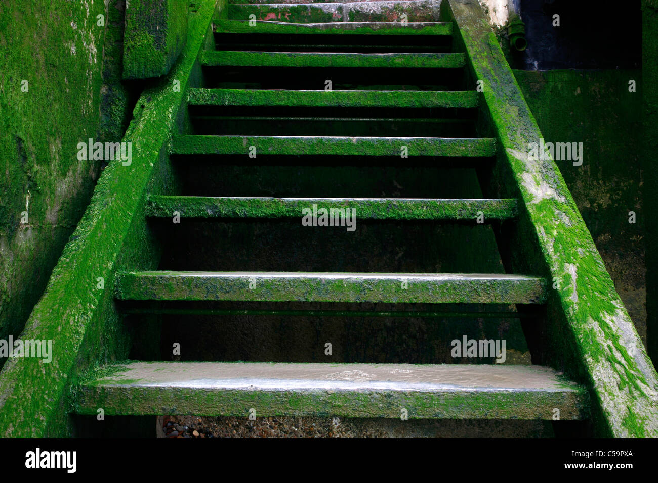 Steps leading down to the River Thames foreshore at New Crane Stairs, Wapping, London, UK - Stock Image