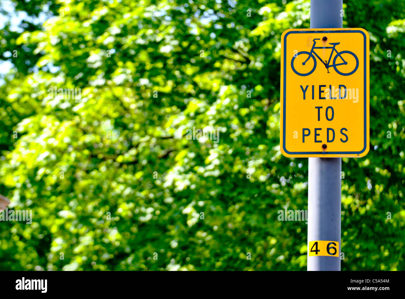 Sign 'Yield to Peds' on the street. - Stock Image