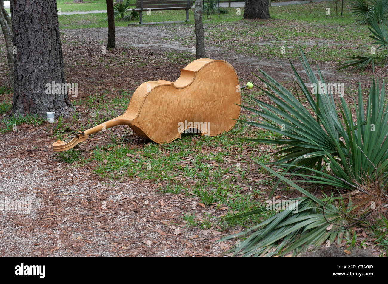 Manatee Springs State Park Florida bass violin lying on ground during intermission of Gospel songfest Stock Photo