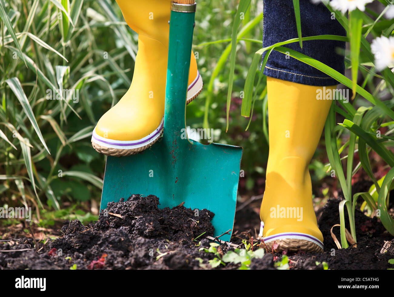 Gardener digging in soil with a spade, wearing yellow rubber boots, close up view. - Stock Image