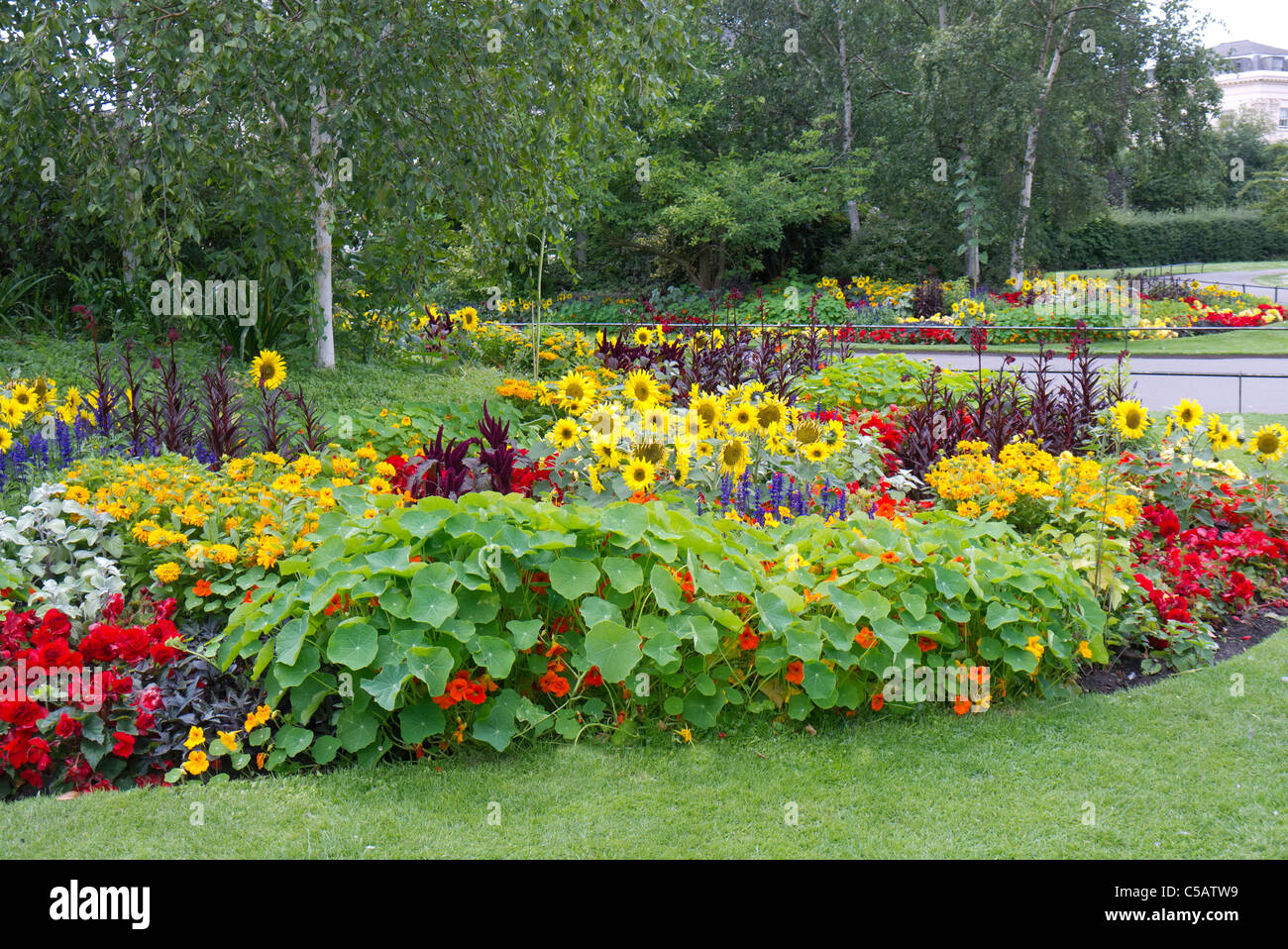 Colourful flower beds in London public gardens - Stock Image