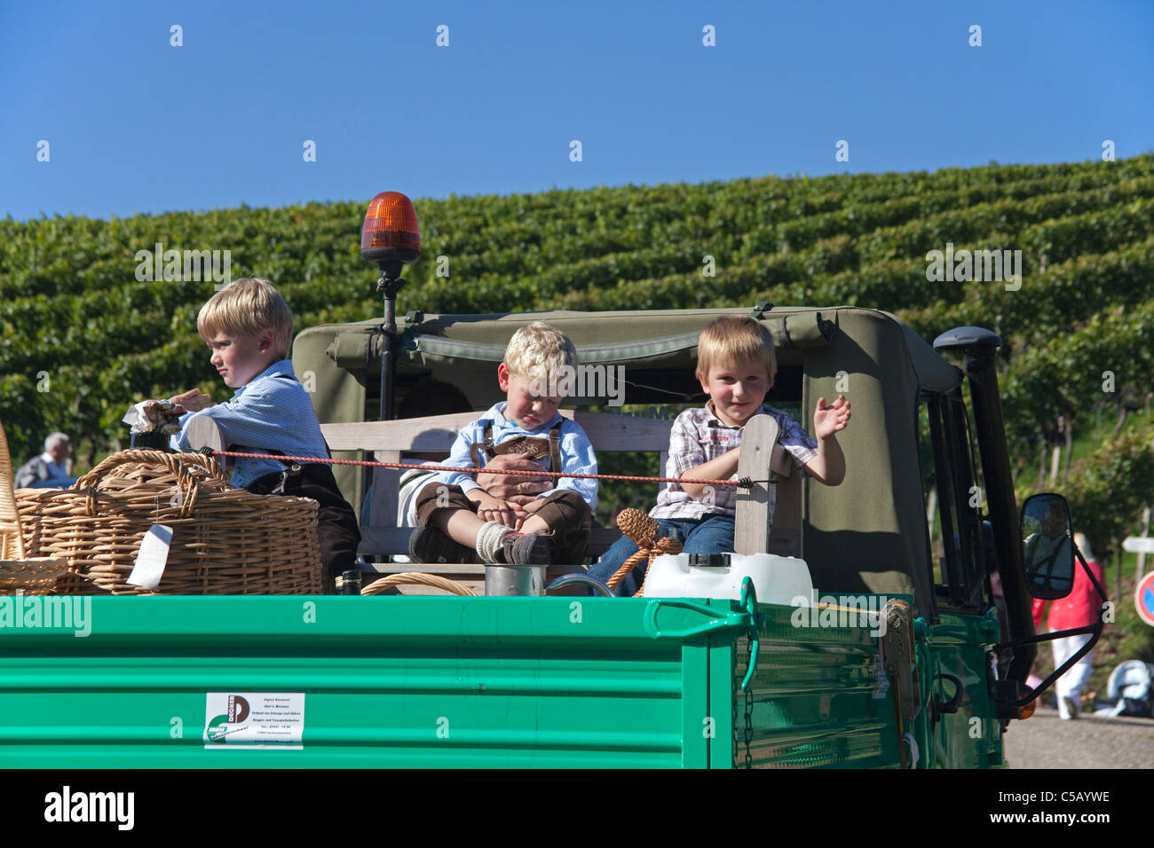 Kinder auf einem Unimog in Sasbachwalden, Schwarzwald, Kids on a Unimog Vineyards grapes, Sabachwalden, Black Forest - Stock Image