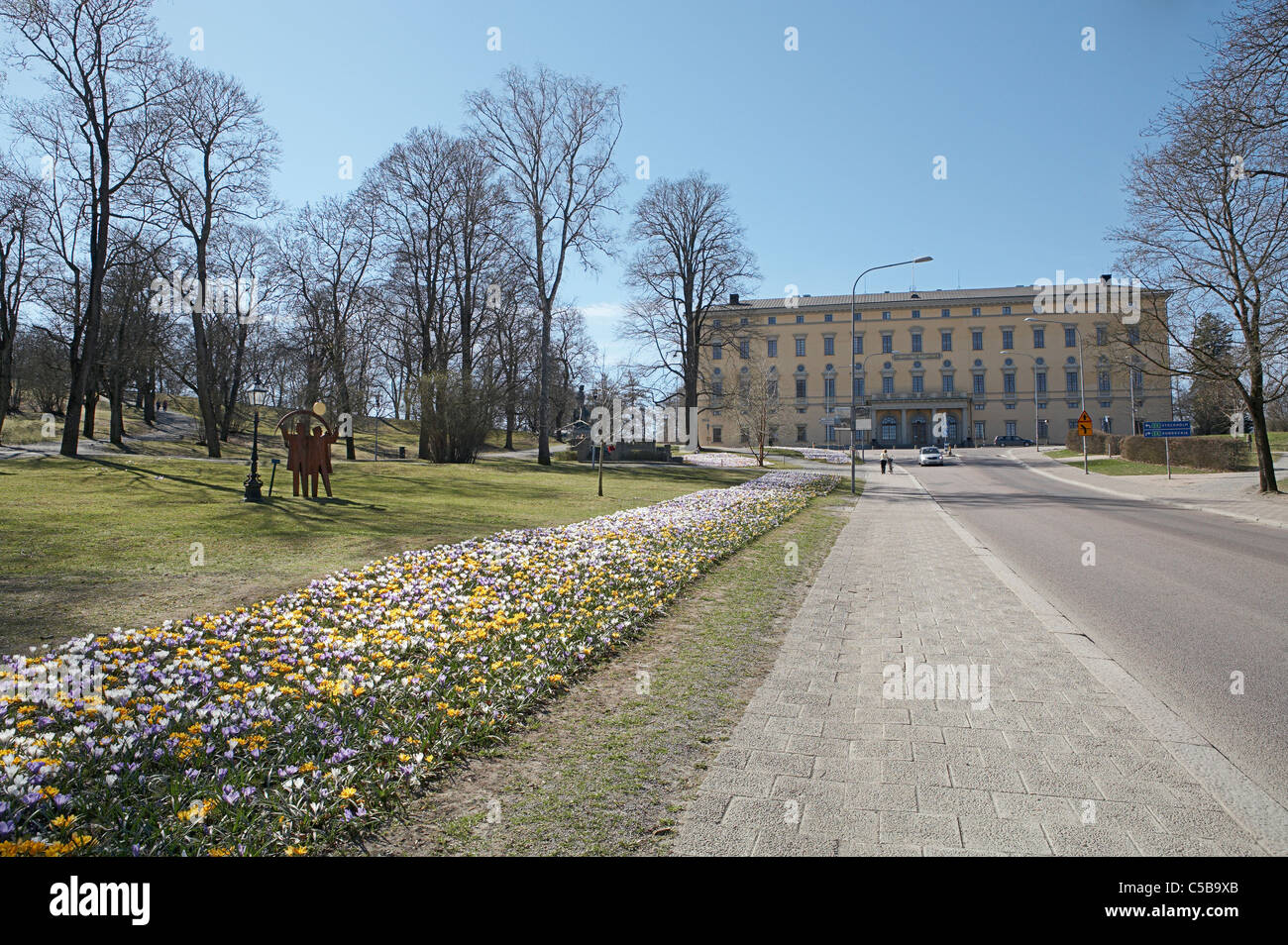 VÃ¥rkrokus flowerbed by the path leading to Carolina Rediviva at Carolina Hill in Uppsala, Sweden Stock Photo
