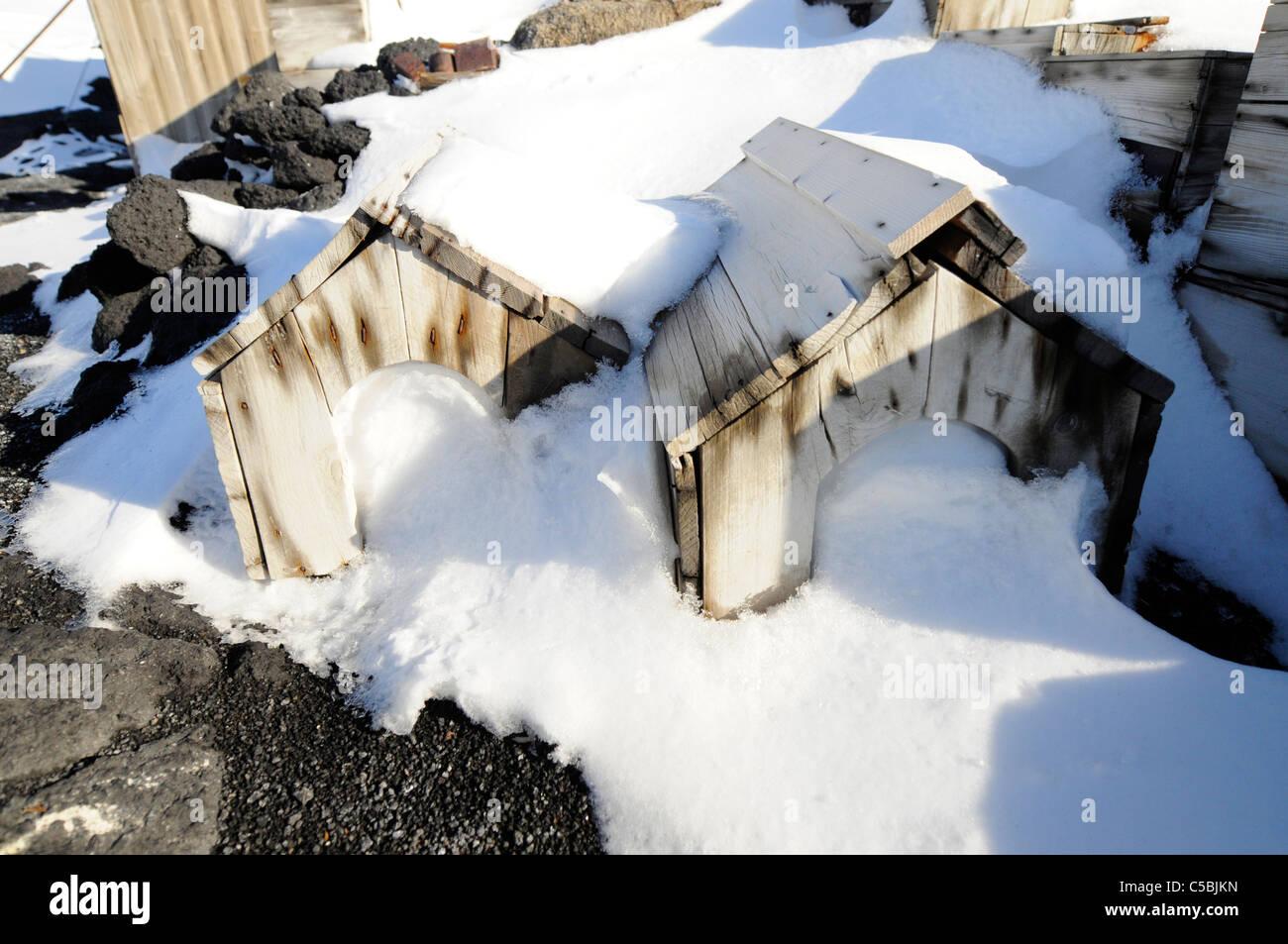 Historic artifact kennels at Shackleton's Hut Cape Royds Antarctica - Stock Image
