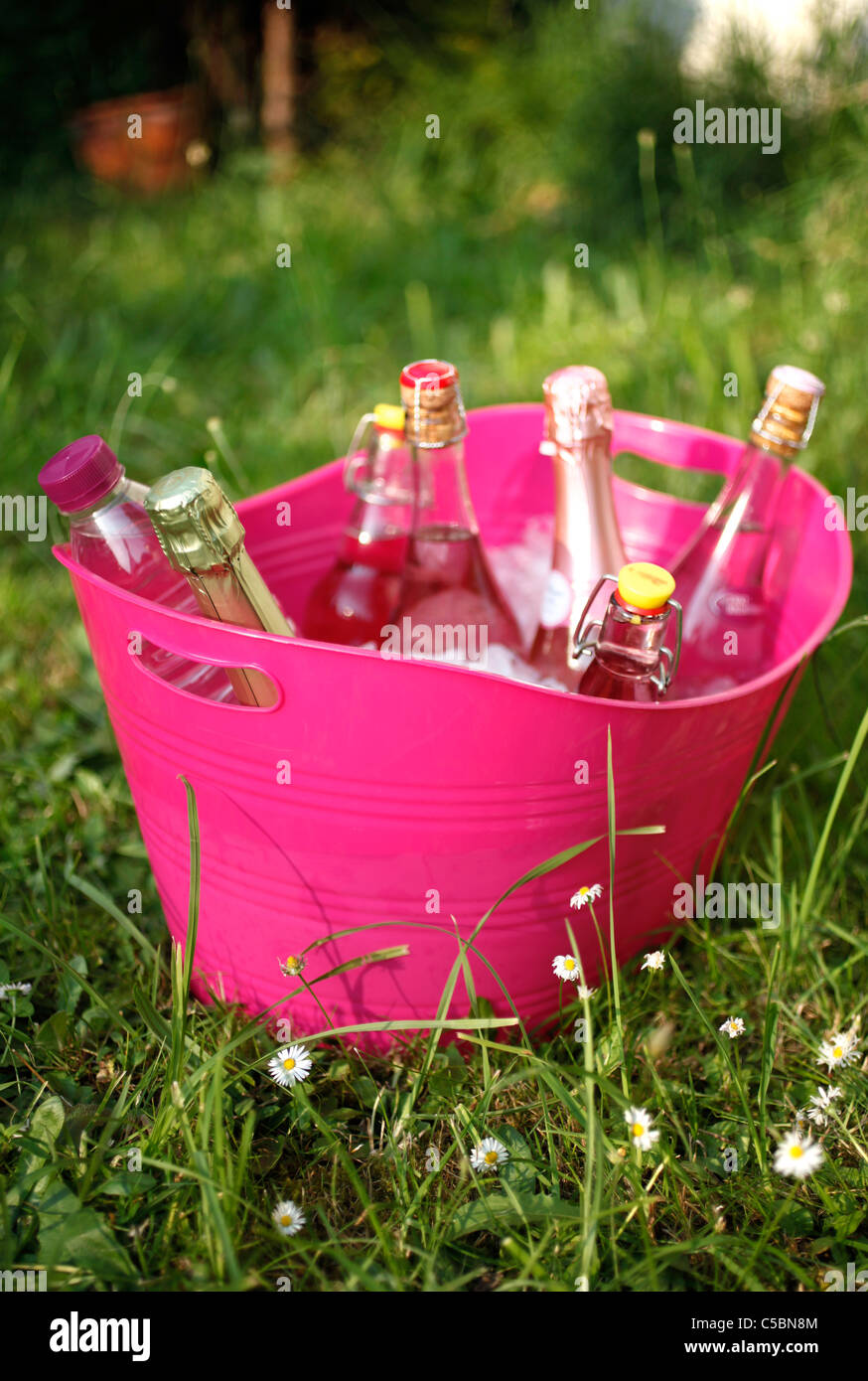 Cooling bottles  with icecubes in a huge pink plastic container in the garden Stock Photo
