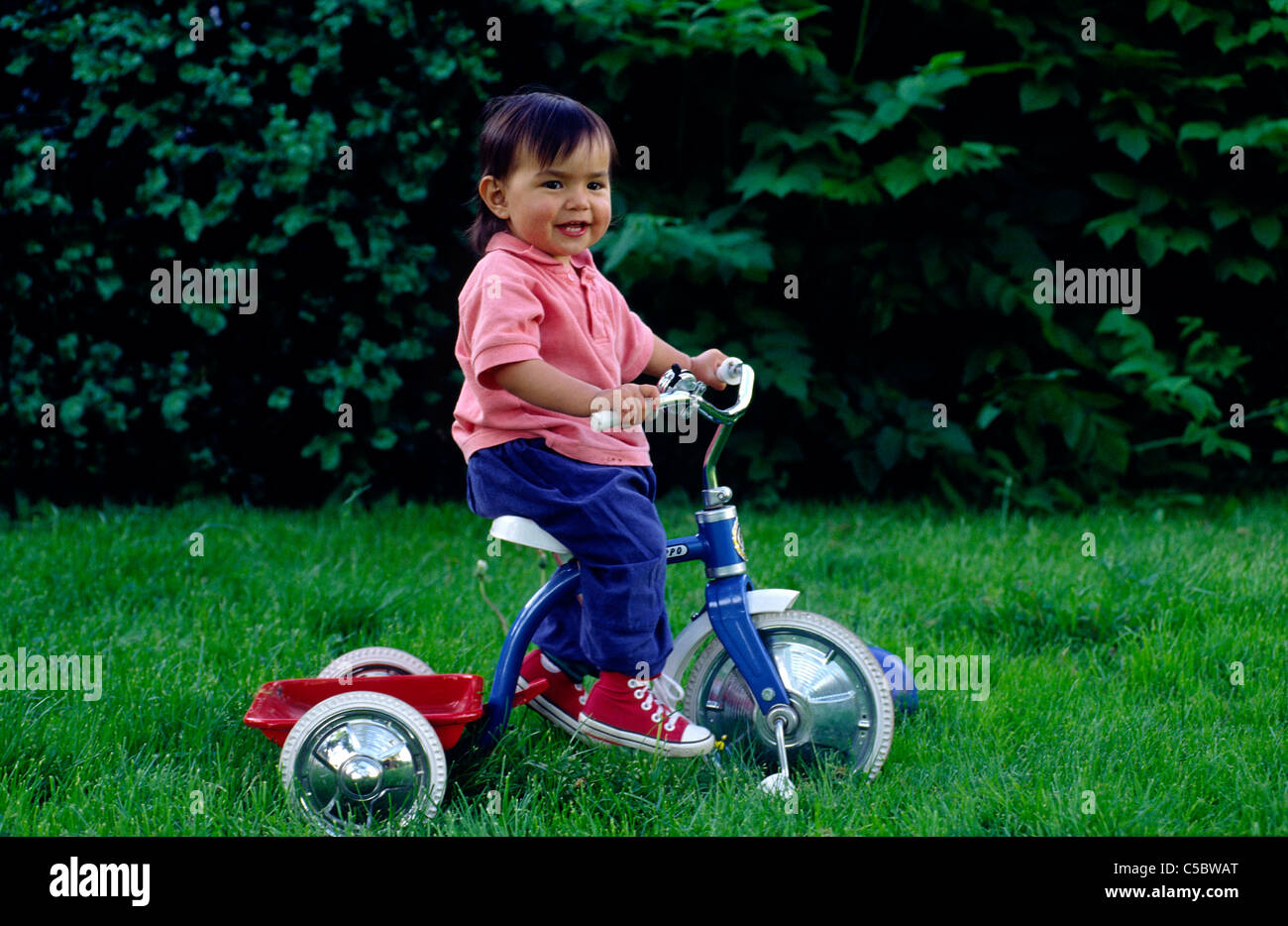 Side view of a little girl sitting on tricycle bike in the lawn - Stock Image