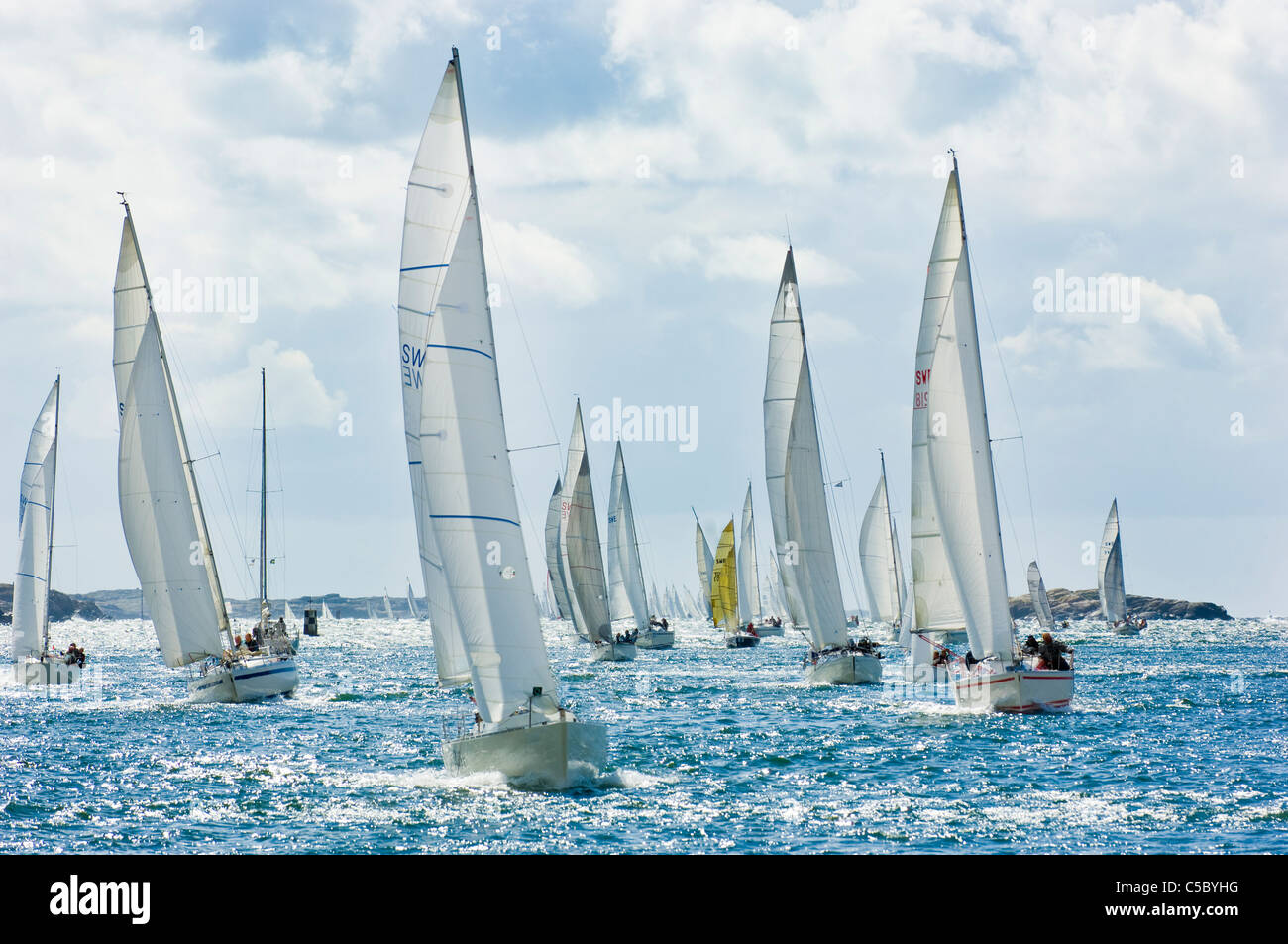 Many sailboats during the oceanic race against cloudy sky - Stock Image