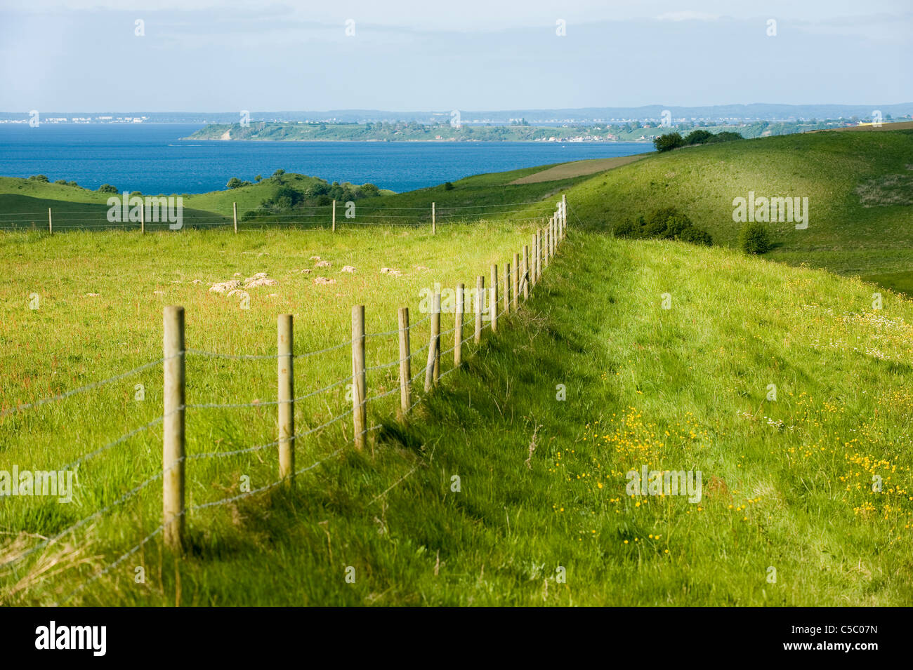 Fenced lush green landscape with sea in the background - Stock Image