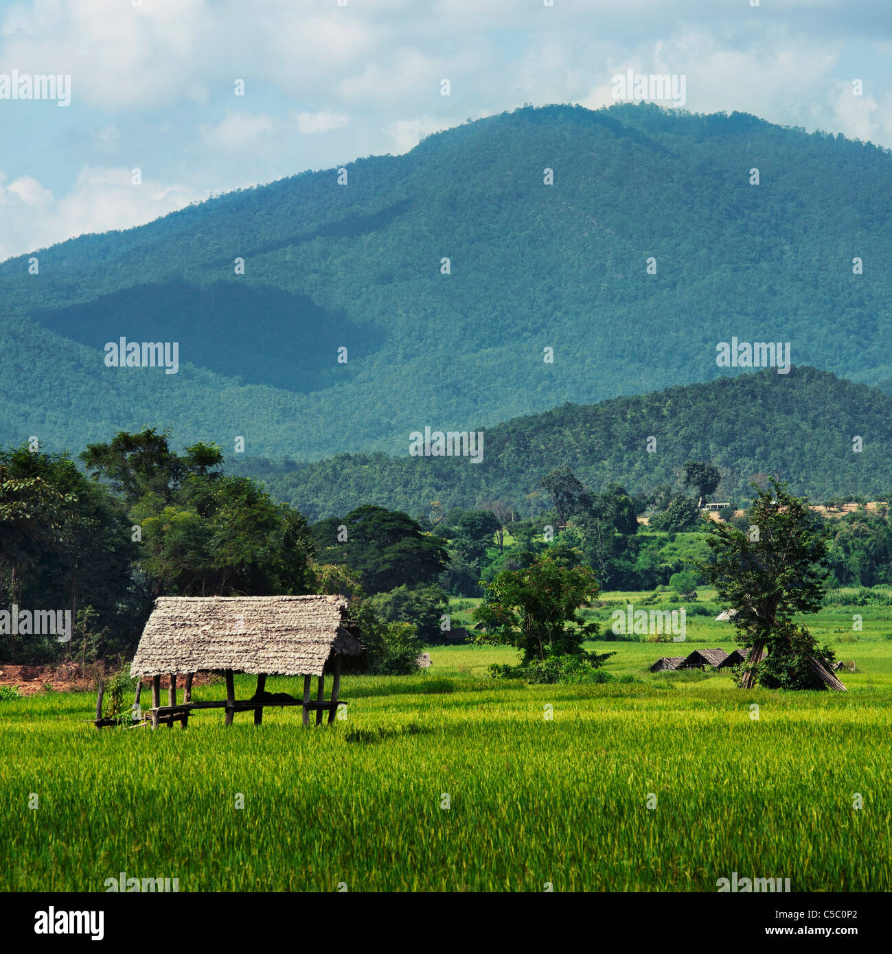 A Wooden Shelter In A Mountainous Area; Mae Hia, Chiang Mai Province, Thailand - Stock Image