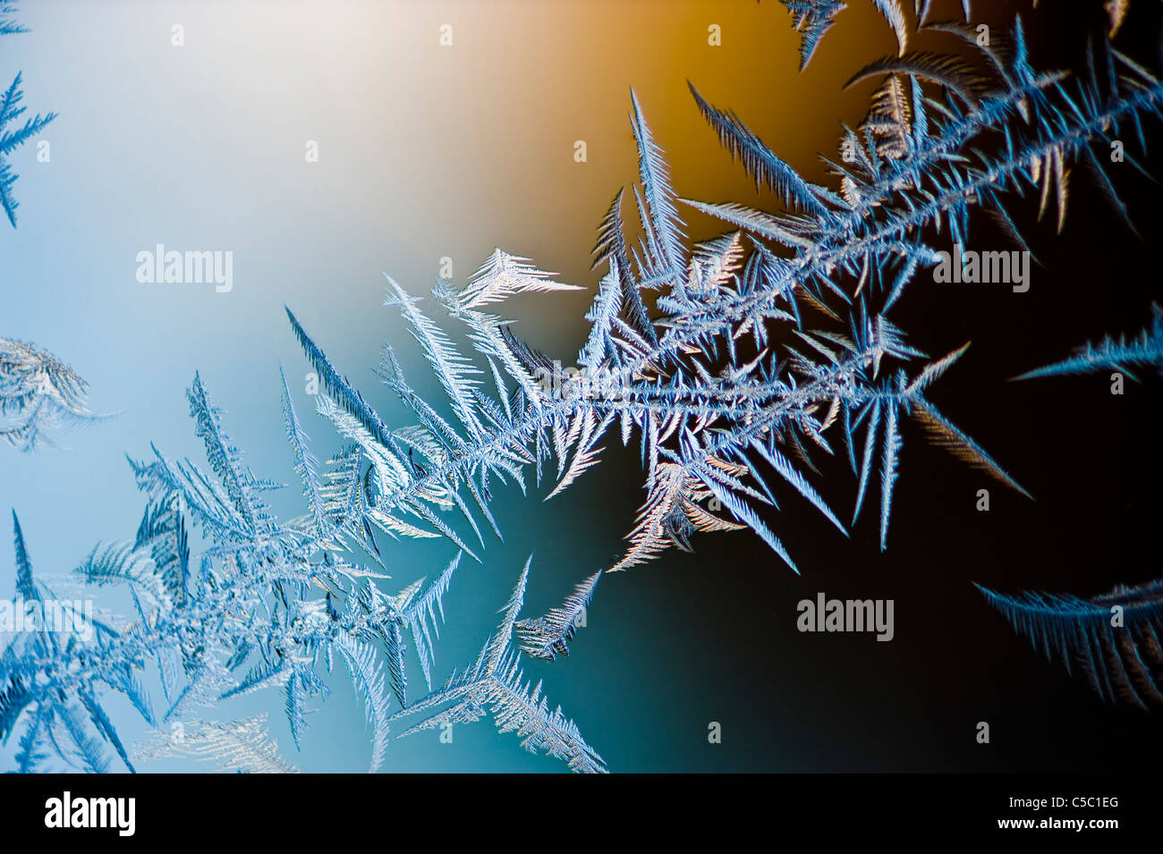 Close-up of ice crystals against blurred background - Stock Image