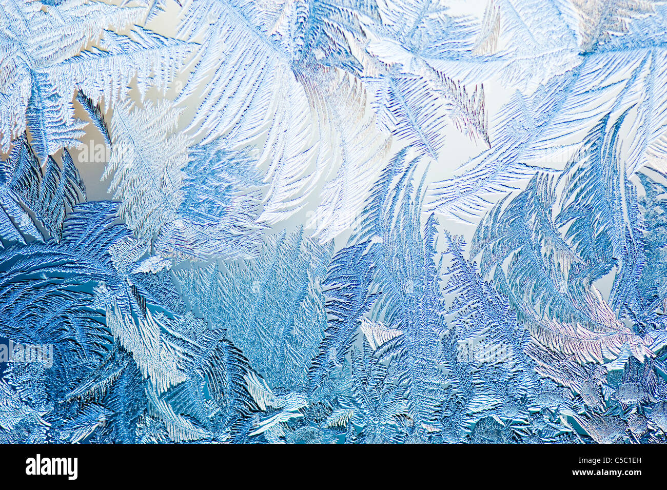 Background of ice crystals on window glass - Stock Image