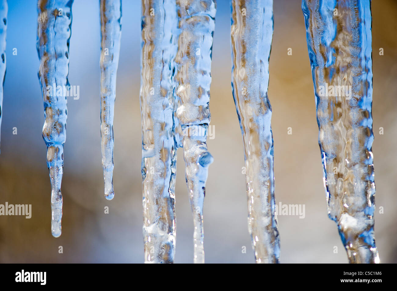 Extreme close-up of icicles against blurred background - Stock Image